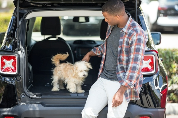 Man petting dog in the trunk of an SUV