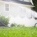 8 Ways to Use Water Wisely in Landscaping