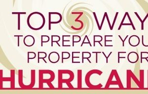 Hurricane preparedness infographic.