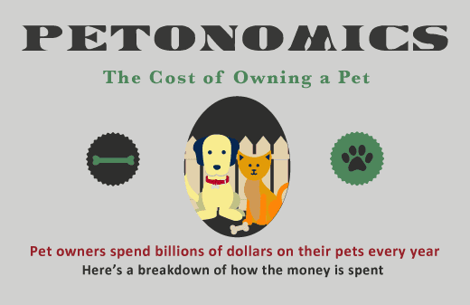 pet industry infographic
