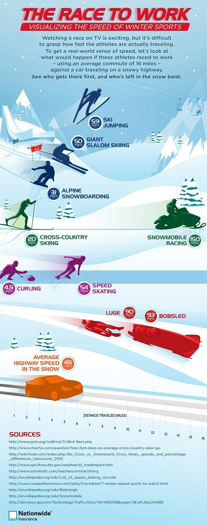Winter sports infographic