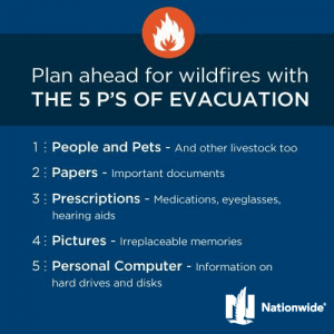 "an illustration of text ""plan ahead for wildfires"""
