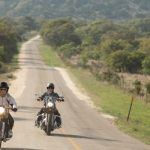 Motorcycling 101: Different Types of Motorcycles