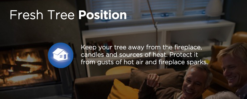 an indoor fireplace with text 'fresh tree position'