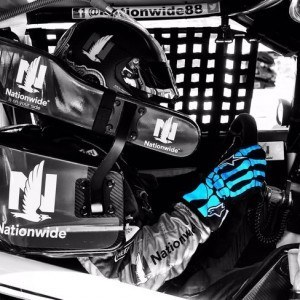Dale Earnhardt Jr. gloves