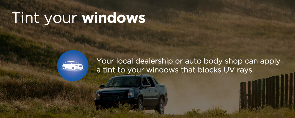 image with text 'tint your windows'