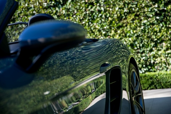 Up close view of the side of a black car with shrubbery in background