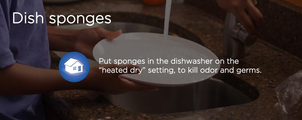 washing a plate