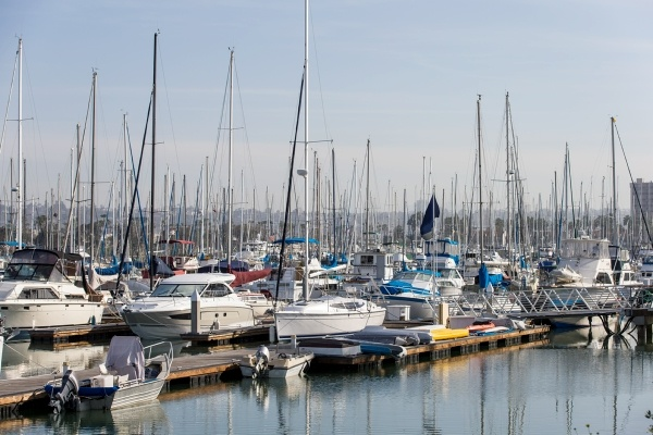 Several sailboats in dock slips