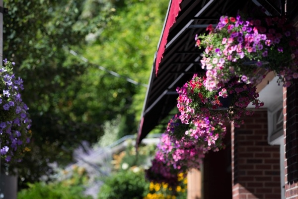 Gutter Cleaning Tips