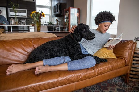 a woman and a dog relaxing on the couch